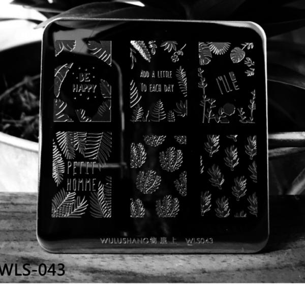 WLS-043