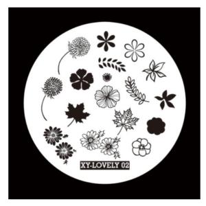 XY-Lovely 02